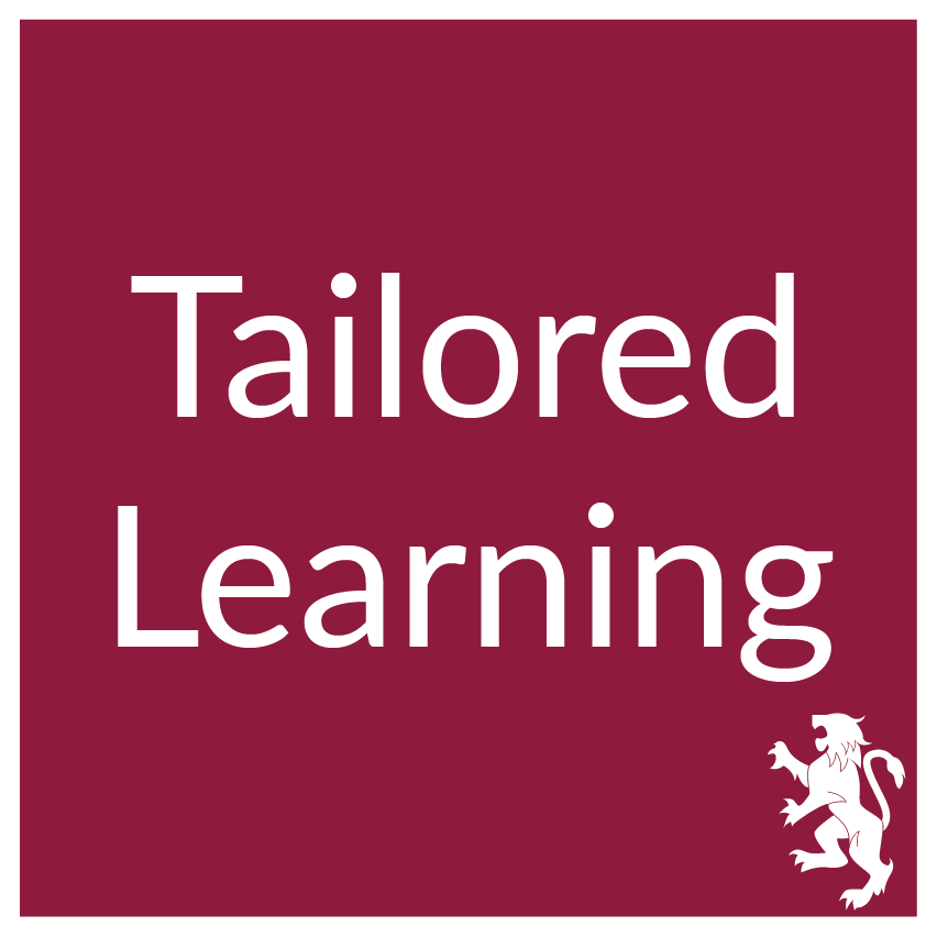 Tailored Learning Intervention : Eskil is an international boardroom development company incorporating applied business psychology and facilitation skills with clients in Middle East, Europe, Africa and America